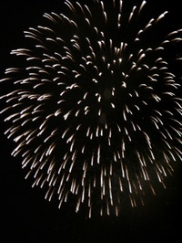 Firework7_2